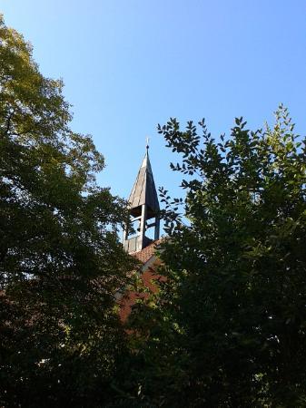 Heinrichsturm: за деревьями виднеется шпиль старой церки, что находится по соседству с башней.