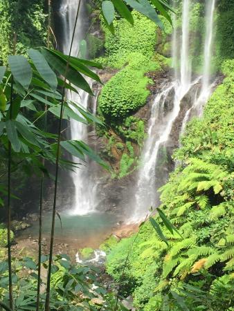 Sananda Bungalows: Sekumpul Wasserfall