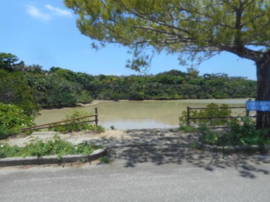 下地島の秘密のビーチです。 - Picture of Shimoji-jima Island, Miyakojima - TripAdvisor