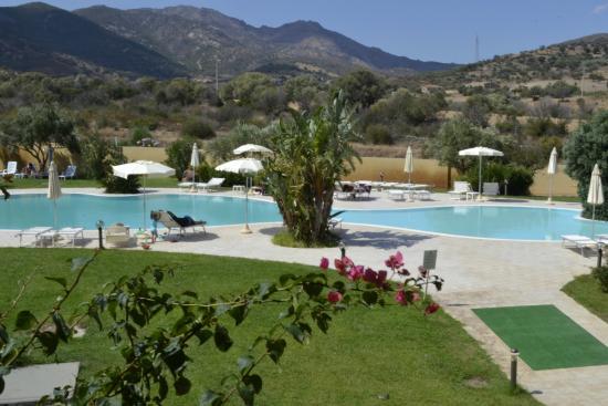 Pool side bild von hotel san teodoro san teodoro for B b san teodoro