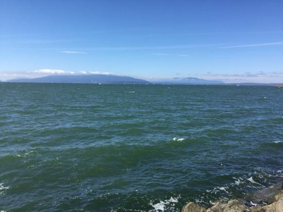 Zuanich Point Park Bellingham All You Need To Know