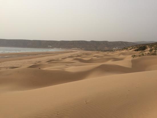 Tafedna, Morocco: âne vert aout 2015