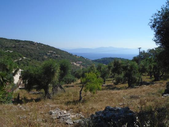 Vellianitatika Retreat: You can walk everywhere. Quiet roads surrounded by olive groves