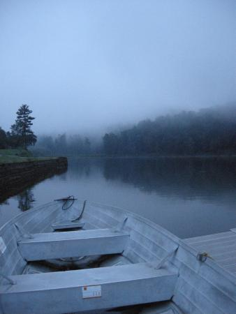 Waterville, PA: Morning mist