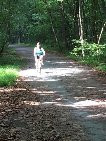 Conewago Recreation Trail: photo2.jpg