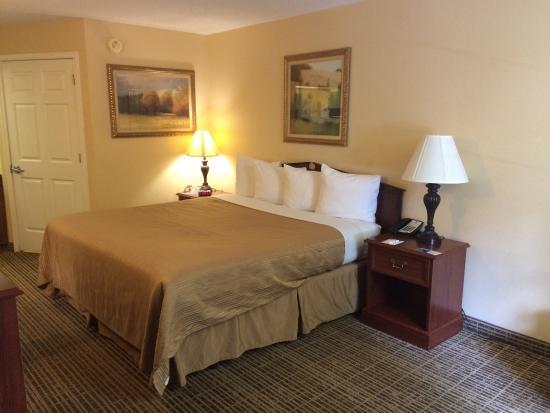 Quality Inn Johnson City: King Room