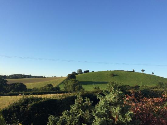 Bulleigh Park Farm Newton Abbot