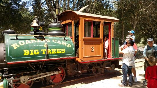 the regeneration of roaring camp in california Wildland fire in the  plants and conditioned the forest floor for the regeneration of species that are  smokemont, tremont, roaring fork.