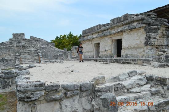 Ruines El Rey (Zona Arqueologica El Rey) : xxx