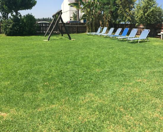 Bay View Hotel Apartments : Lounging / sunbathing area
