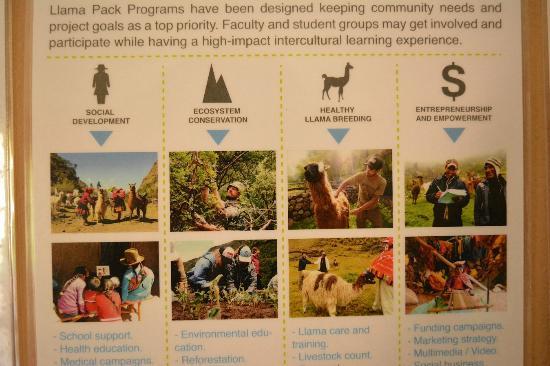 Llama Pack Backpacker: llama pacj project