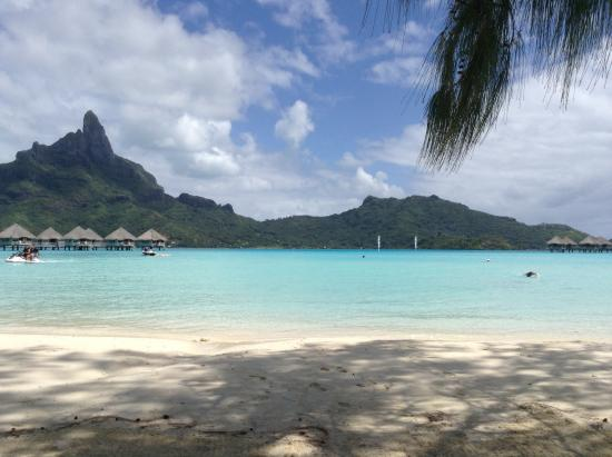 the view from the beac picture of le meridien bora bora bora bora tripadvisor. Black Bedroom Furniture Sets. Home Design Ideas