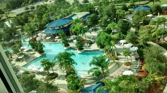 Lazy River Picture Of Hilton Orlando Lake Buena Vista