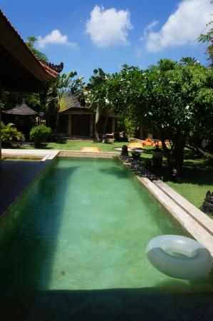 Villa Dermawan: pool and breakfast view