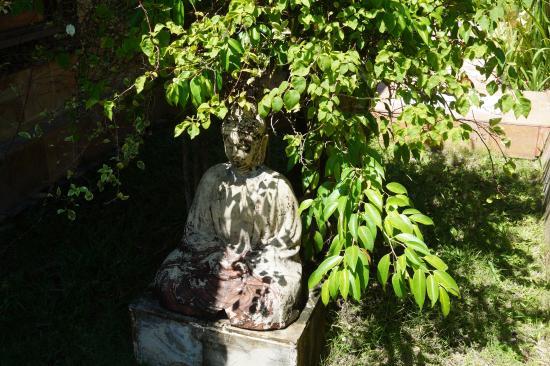 Villa Dermawan: garden
