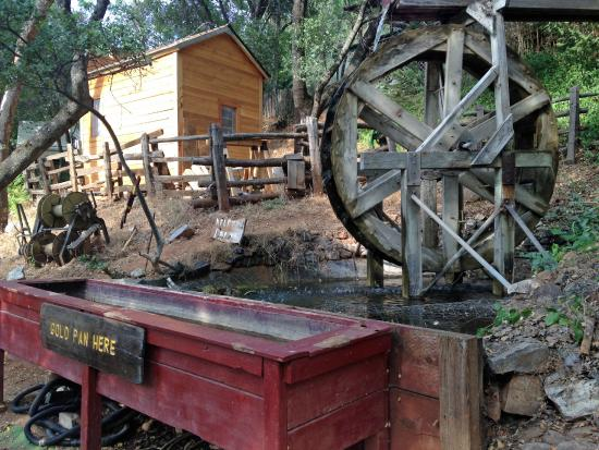 49er RV Ranch: Gold Panning Area