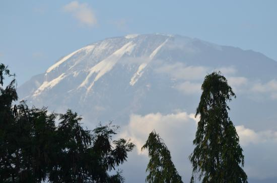 Hartebeest View Lodge: Mount Kilimanjaro from hotel roof top