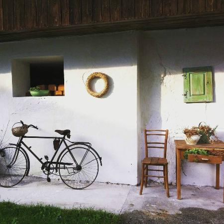 Apartments Trata : Bike