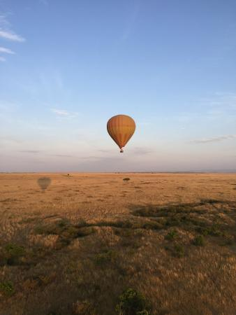 Balloon Safaris Ltd.