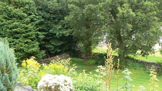 Derrybeg Bed and Breakfast: Back garden
