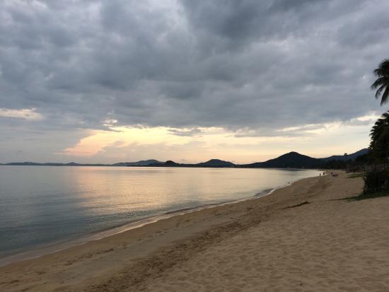 Very nice and near to beach experience