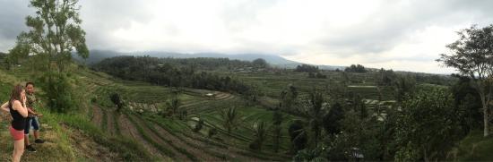 Bali Must Be Crazy: photo0.jpg
