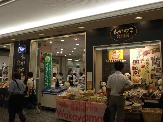 Wakayama Kishu Museum