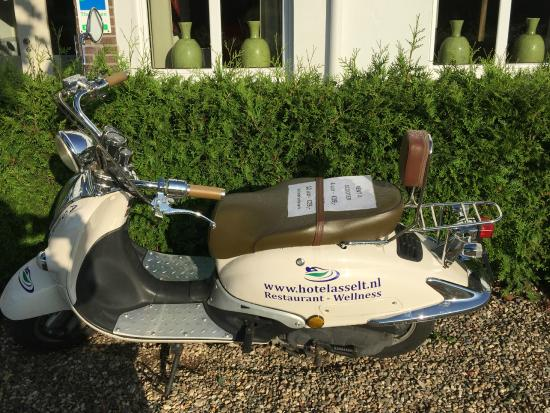 Hotel Asselt : Hotel bike for rent