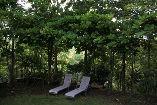 Fidelito Ranch & Lodge: Garten