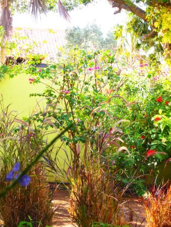 Villa L'Orangerie: Stukje tuin...