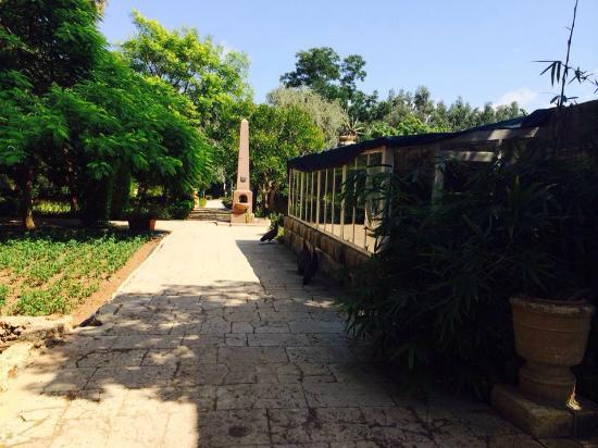 San Anton Gardens: 1