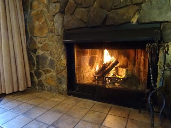 Douglas Fir Resort & Chalets: 室内(暖炉)