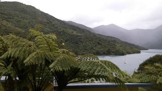 Endeavour Inlet, Selandia Baru: View from our balcony, livingroom and bedroom