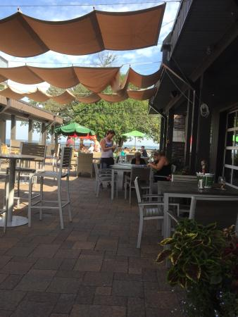 Spicer, MN: Patio bees