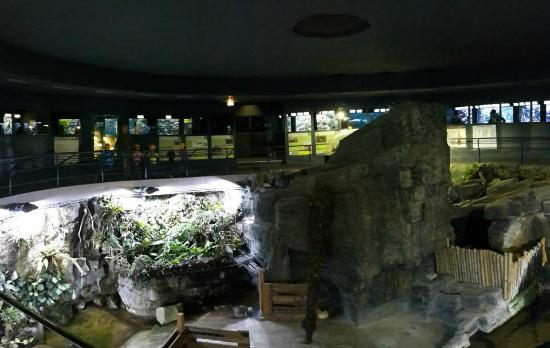 ... Picture of Aquarium Tropical de la Porte Doree, Paris - TripAdvisor