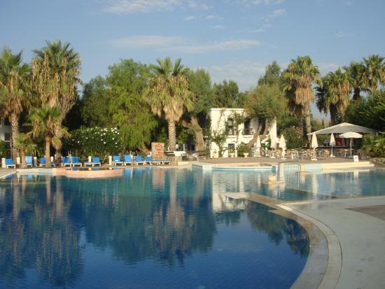 موسكيبي أبارت: La piscine extérieure