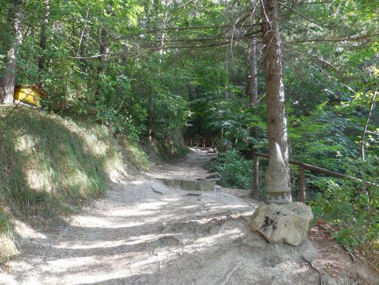 Sentiero foto di sentiero degli gnomi bagno di romagna - Percorso gnomi bagno di romagna ...