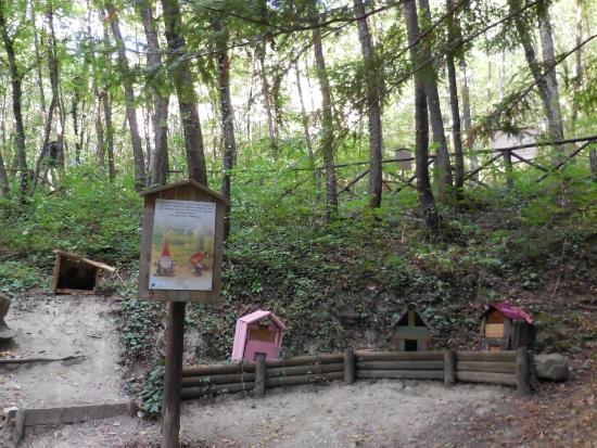 Fine percorso foto di il sentiero degli gnomi bagno di - Percorso gnomi bagno di romagna ...