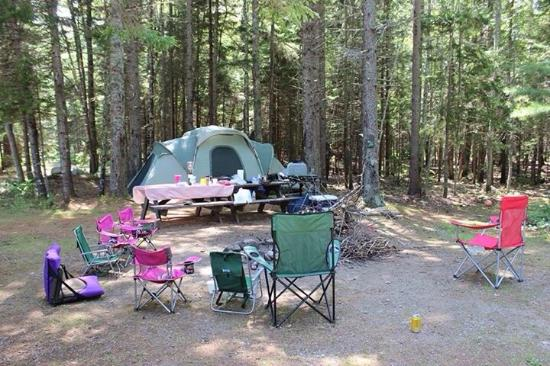 Sherwood Forest Camping >> Sherwood Forest Campsite And Cabins Updated 2019 Prices
