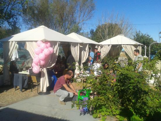 Don Gelato: back garden