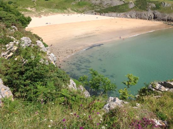 North Down Bed and Breakfast : Walking cliffs and beaches