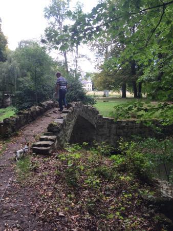 Promenade dans la for t du parc picture of parc rousseau for Jardin foret