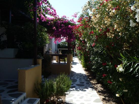 Diplos Studios: Vista giardino