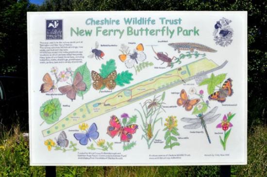 Bebington, UK: New Ferry Butterfly Park