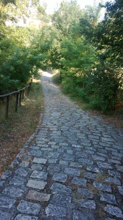 Pietrelcina, Włochy: via del Rosario