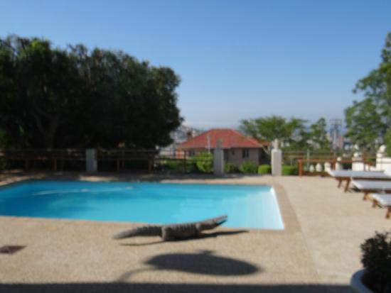 "De Tafelberg Guesthouse: ""Garten"" mit Pool"