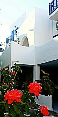Teo Hotel照片