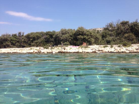 Villa Andreja Pension Mare and Apartments Toncica: Il mare di Pag