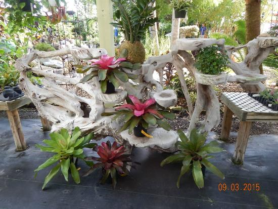 Rock City Gardens (Wabasso)   All You Need To Know Before You Go (with  Photos)   TripAdvisor