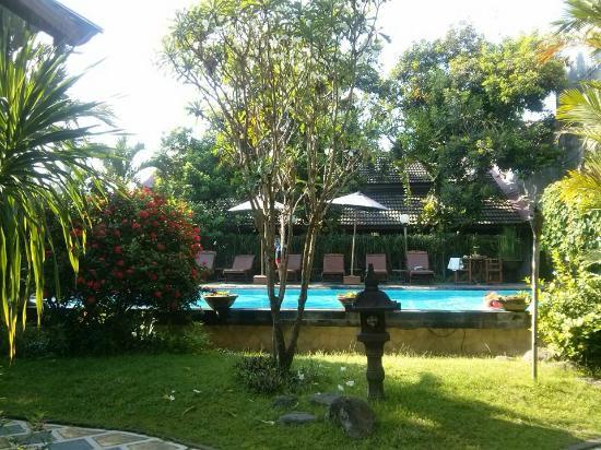 Rumah Mertua Boutique Hotel & Garden Restaurant & Spa : Pool